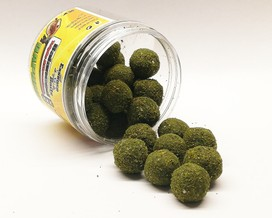"ESSENCE BAITS BILANCIATE TRIPLE ATTRACTION "" DAPHNIA "" 80 GR"
