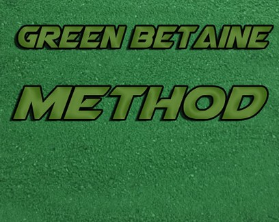 "ESSENCE BAITS "" GREEN BETAINE "" METHOD MIX 1 KG"